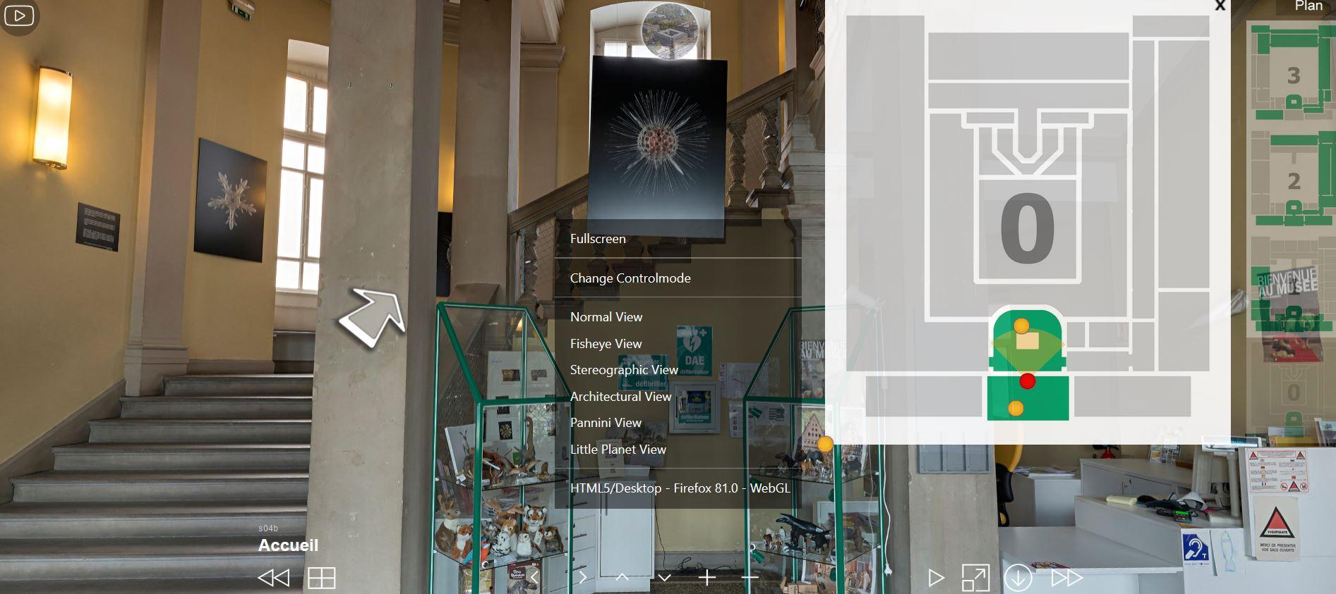 Visite virtuelle du musée zoologique de Strasbourg
