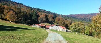 Séjour Nature, Montagne et Terroir en Haute-Doller Oberbruck