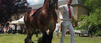 Concours de Chevaux de Trait Ardennais Launois-sur-Vence