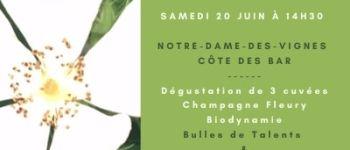 sur les sentiers de la biodiversité de la Côte des Bar Neuville-sur-Seine