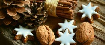 Noël au naturel Aix-Villemaur-Pâlis
