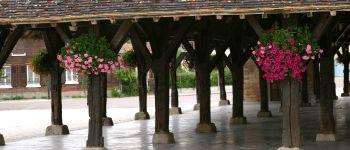 Halle en bois de Brienne-le-Château