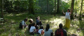 Balade contée: les malices des p\tites bêtes de la forêt Piney