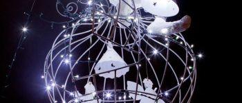 Festival Imaginaire : rencontre de l\ordinaire et du merveilleux Schirmeck