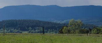 Sentiers Plaisir : Le Champ du Feu, un joyau de la nature Belmont