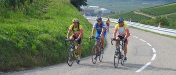 Cyclomontagnarde Vosges Eguisheim