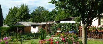 Visite guidée : Balade dans le Haut Rebberg Mulhouse