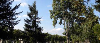 Visite guidée : le cimetière, entre art et histoire Mulhouse