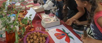 Parcours scientifique à Colmar Colmar