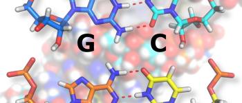 À la découverte du monde de l\ARN Strasbourg