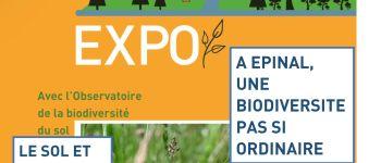 EXPOSITION BIODIVERSITÉ Épinal