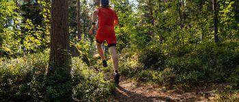 TRAIL - COURSE DE MONTAGNE Walscheid